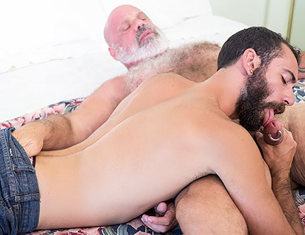 Handled By The Daddy Bear